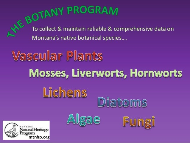 To collect & maintain reliable & comprehensive data on Montana's native botanical species…. mtnhp.org