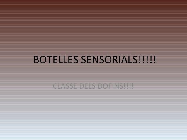 BOTELLES SENSORIALS!!!!! CLASSE DELS DOFINS!!!!