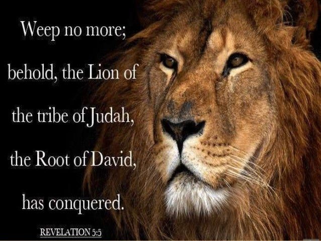 biblical figures in the lion the The bible speaks more about the tribe of judah than any other single tribe of  israel why is this  a lion: the biblical symbol of the tribe of judah the history of .