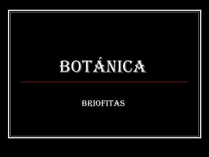 Botánica  Briofitas