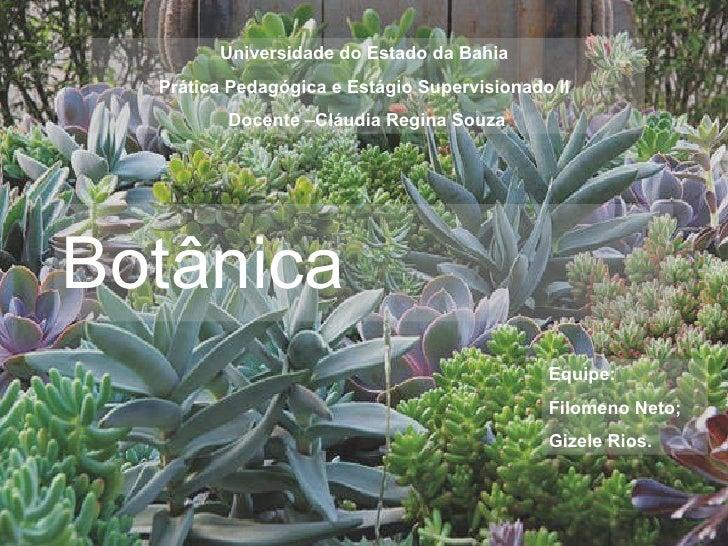 Botânica   Universidade do Estado da Bahia  Prática Pedagógica e Estágio Supervisionado II  Docente –Cláudia Regina Souza ...
