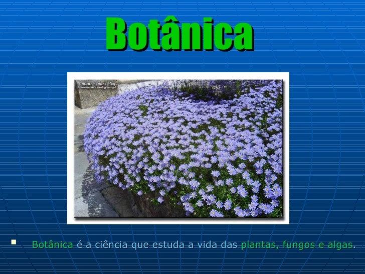Botânica <ul><li>Botânica  é a ciência que estuda a vida das  plantas, fungos e algas .   </li></ul>