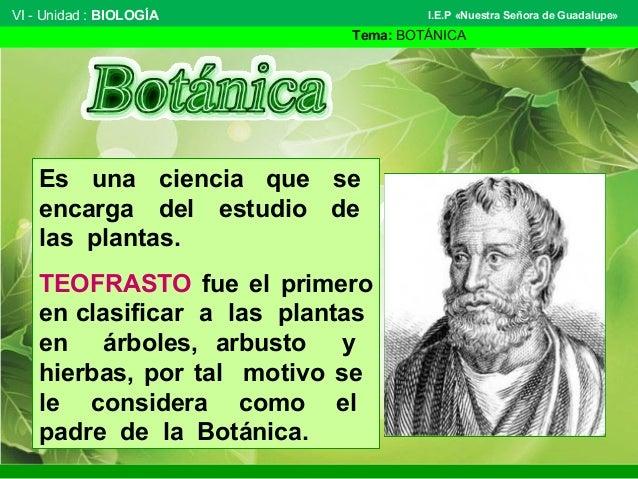 VI - Unidad : BIOLOGÍA Tema: BOTÁNICA I.E.P «Nuestra Señora de Guadalupe» Es una ciencia que se encarga del estudio de las...