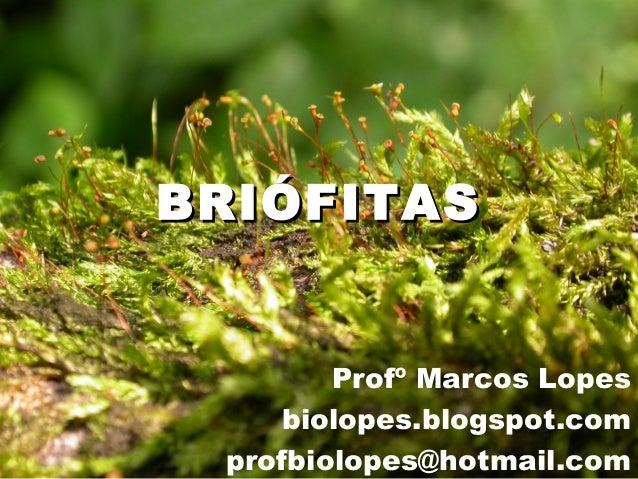 BRIÓFITASBRIÓFITASProfº Marcos Lopesbiolopes.blogspot.comprofbiolopes@hotmail.com