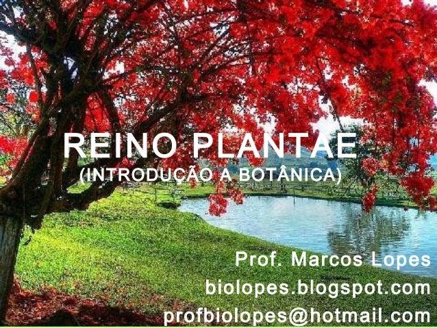REINO PLANTAE(INTRODUÇÃO A BOTÂNICA)              Prof. Marcos Lopes           biolopes.blogspot.com       profbiolopes@ho...
