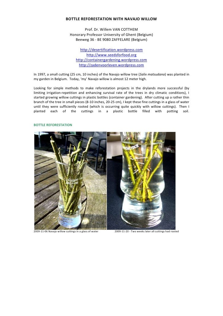 BOTTLE REFORESTATION WITH NAVAJO WILLOW<br />Prof. Dr. Willem VAN COTTHEMHonorary Professor University of Ghent (Belgium)B...