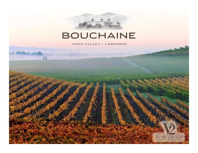 A SPECIAL SPOT IN THE NAPA VALLEY	    • s	    Bouchaine Vineyards is located in the southern-most area of the Carneros app...