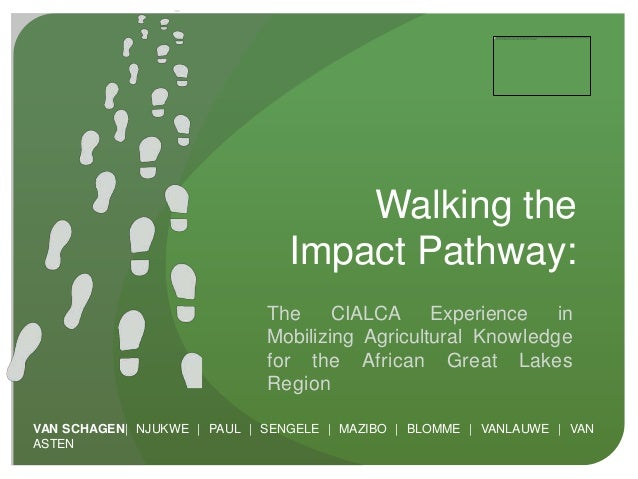 Walking the                                Impact Pathway:                             The     CIALCA Experience       in ...