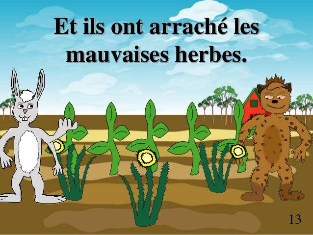 Bouki et lapin histoire - Arrache mauvaise herbe ...