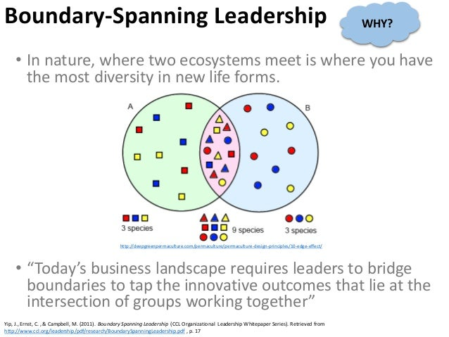 Boundary-Spanning Leadership • In nature, where two ecosystems meet is where you have the most diversity in new life forms...