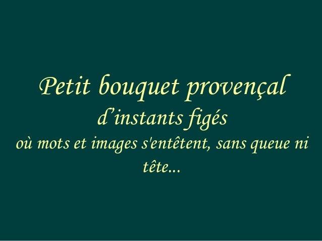 Petit bouquet provençal d'instants figés où mots et images s'entêtent, sans queue ni tête...