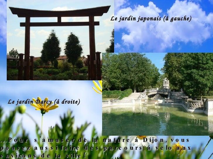 NATURE À DIJON: les jardins Les premiers jardins connus à Dijon sont ceux des monastères médiévaux. Puis, les jardins se d...