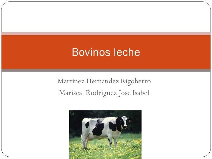 Bovinos lecheMartinez Hernandez RigobertoMariscal Rodriguez Jose Isabel