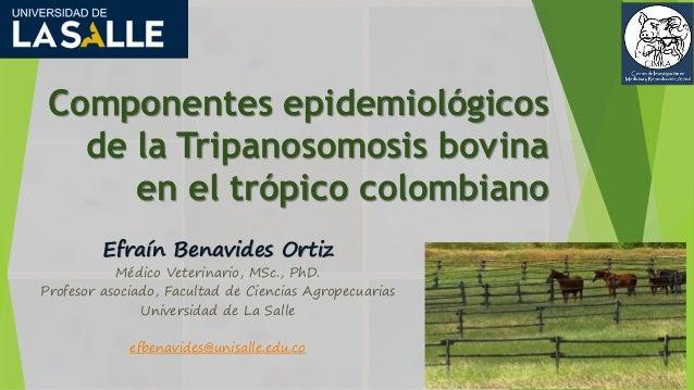 Componentes epidemiológicos de la Tripanosomosis bovina en el trópico colombiano Efraín Benavides Ortiz Médico Veterinario...