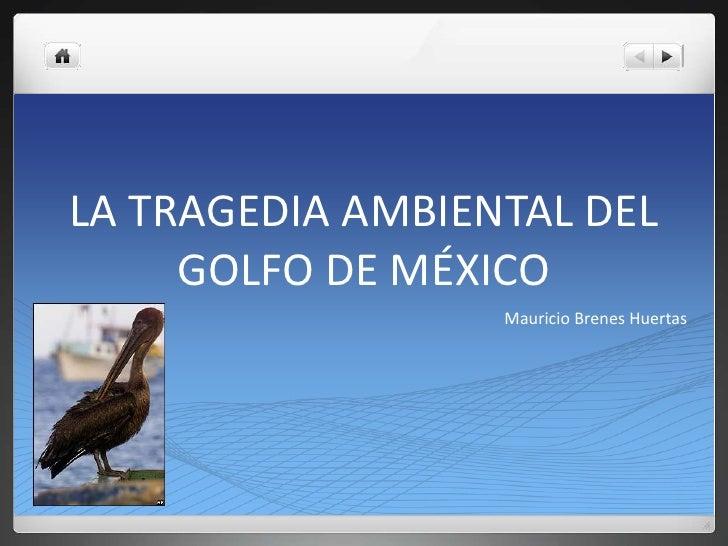 LA TRAGEDIA AMBIENTAL DEL GOLFO DE MÉXICO<br />Mauricio Brenes Huertas<br />