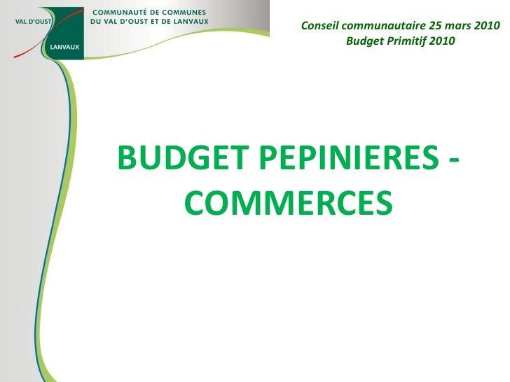 BUDGET PEPINIERES - COMMERCES Conseil communautaire 25 mars 2010 Budget Primitif 2010