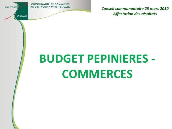 BUDGET PEPINIERES - COMMERCES Conseil communautaire 25 mars 2010 Affectation des résultats