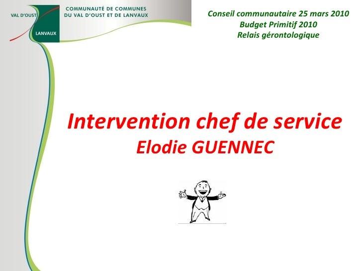 Intervention chef de service Elodie GUENNEC Conseil communautaire 25 mars 2010 Budget Primitif 2010 Relais gérontologique
