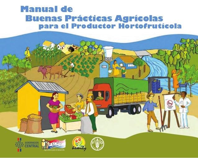 para el Productor Hortofrutícola Buenas Prácticas Agrícolas Manual de