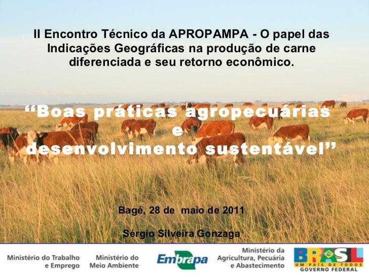 II Encontro Técnico da APROPAMPA - O papel das Indicações Geográficas na produção de carne diferenciada e seu retorno econ...