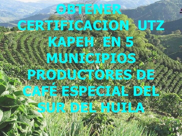 OBTENER  CERTIFICACION  UTZ KAPEH  EN 5 MUNICIPIOS PRODUCTORES DE CAFÉ ESPECIAL DEL SUR DEL HUILA