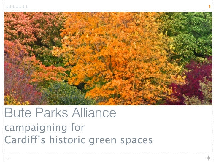 1     Bute Parks Alliance campaigning for Cardiff's historic green spaces