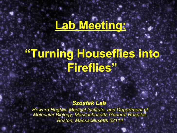 "Lab Meeting:   ""Turning Houseflies into Fireflies"" Szostak Lab   Howard Hughes Medical Institute, and Department of Molecu..."