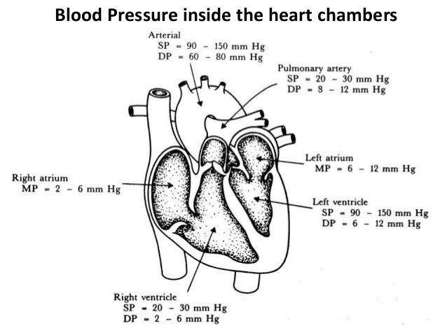 blood pressure direct method