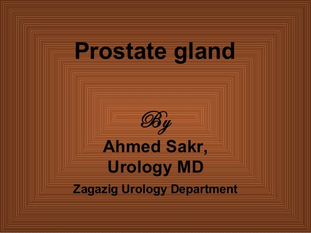 Prostate gland Ahmed Sakr, Urology MD By Zagazig Urology Department