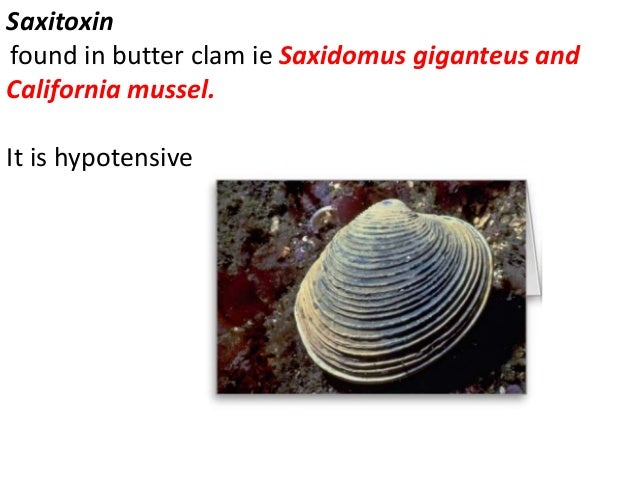 ATX-II It is polypeptide found in sea Anemones. it is cardiotonic ( positive inotropic)