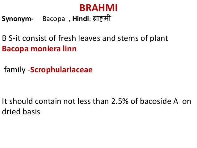 BRAHMI Synonym- Bacopa , Hindi: ब्राह्मी B S-it consist of fresh leaves and stems of plant Bacopa moniera linn family -Scr...