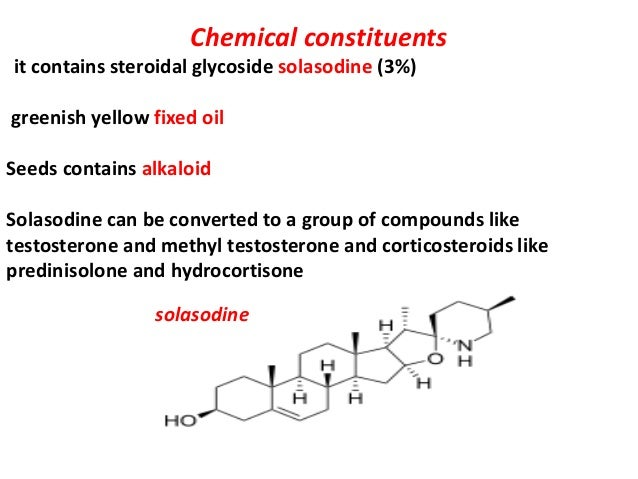 Chemical constituents it contains steroidal glycoside solasodine (3%) greenish yellow fixed oil Seeds contains alkaloid So...