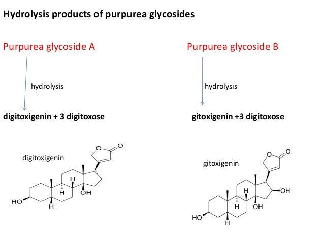 Hydrolysis products of purpurea glycosides Purpurea glycoside A Purpurea glycoside B hydrolysis hydrolysis digitoxigenin +...