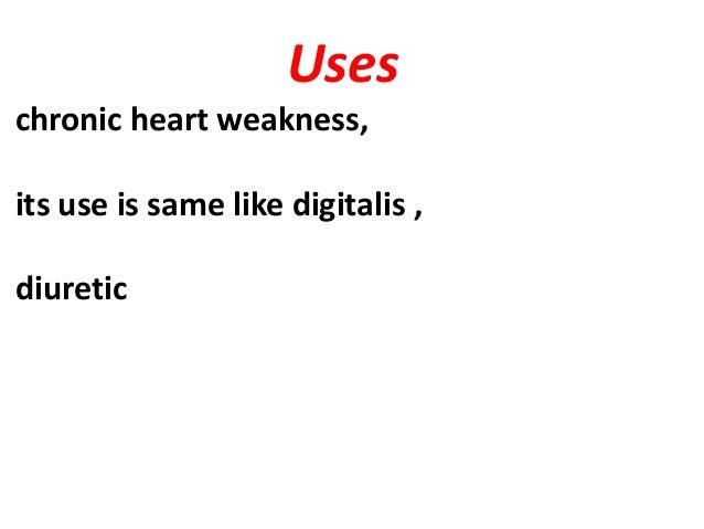 Uses chronic heart weakness, its use is same like digitalis , diuretic