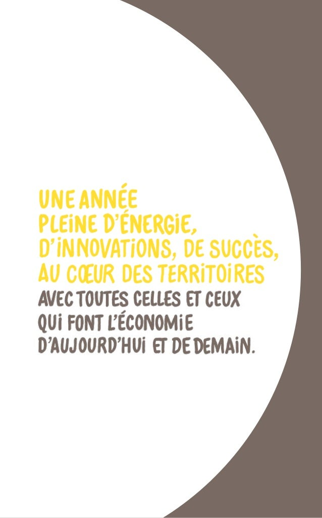 RAPPORT ANNUEL 2014 Bpifrance 14