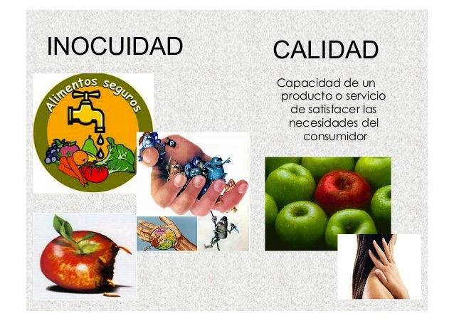 Buenas pr cticas de manufactura para industrias de alimentos for Manual de buenas practicas de higiene y manipulacion de alimentos