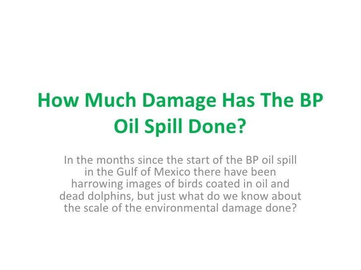 How Much Damage Has The BP Oil Spill Done?<br />In the months since the start of the BP oil spill in the Gulf of Mexico th...