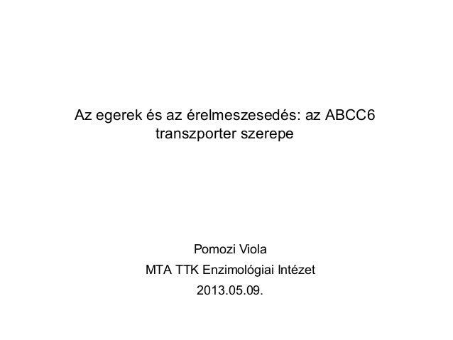 Az egerek és az érelmeszesedés: az ABCC6transzporter szerepePomozi ViolaMTA TTK Enzimológiai Intézet2013.05.09.