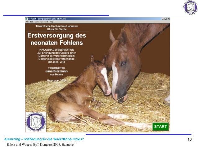 eLearning – Fortbildung für die tierärztliche Praxis? 16 Ehlers und Wagels, BpT-Kongress 2008, Hannover