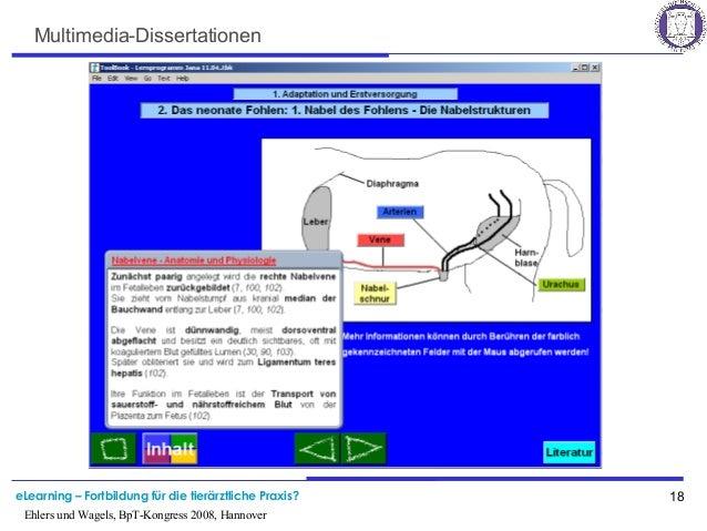 eLearning – Fortbildung für die tierärztliche Praxis? 18 Ehlers und Wagels, BpT-Kongress 2008, Hannover Multimedia-Dissert...