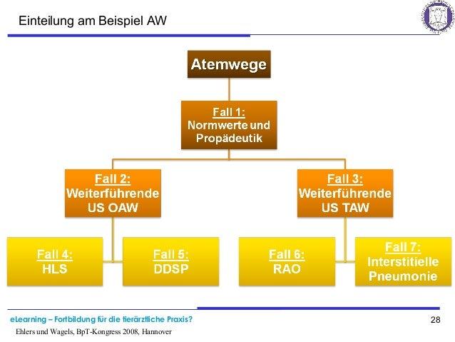 eLearning – Fortbildung für die tierärztliche Praxis? 28 Ehlers und Wagels, BpT-Kongress 2008, Hannover Einteilung am Beis...