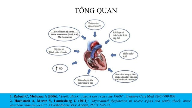 """TỔNG QUAN 1. Rabuel C, Mebazaa A (2006), """"Septic shock: a heart story since the 1960s"""", Intensive Care Med 32(6):799-807. ..."""