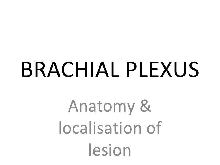 BRACHIAL PLEXUS      Anatomy &    localisation of        lesion
