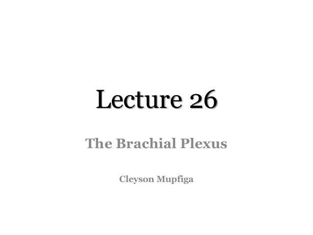 Lecture 26 The Brachial Plexus Cleyson Mupfiga
