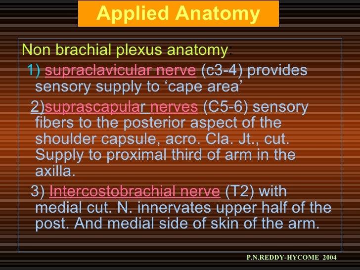 Brachial Plexus Block New