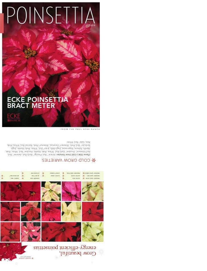 2009ECKE POINSETTIABRACT METER           ™   TM               FROM   THE   PAUL   ECKE   R ANCH