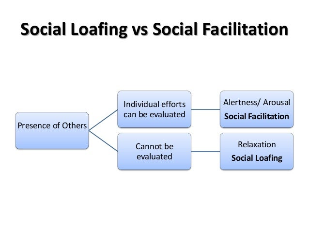 an assessment of the popularity of social loafing in groups The study of group processes concerns the cognitive can suffer reduced motivation in groups (social loafing) a fairly rapid decline in popularity.