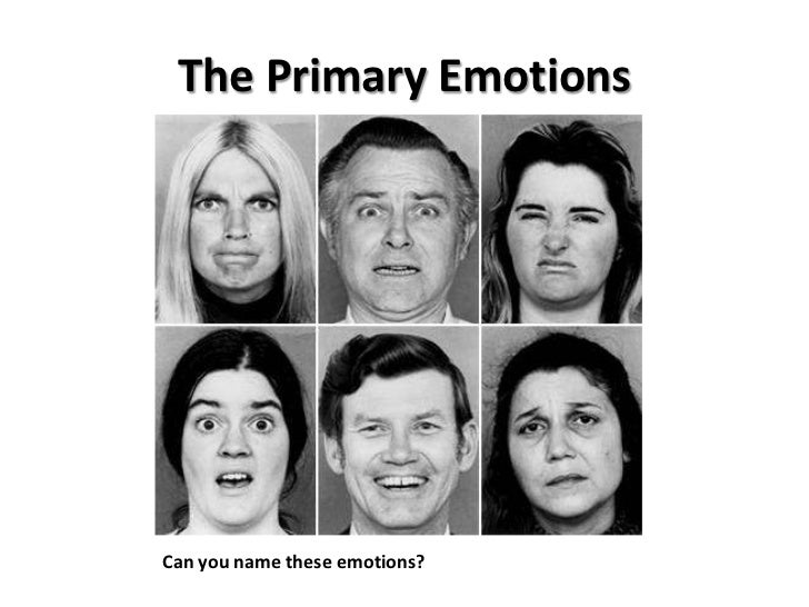 sociology of emotion Sociology of emotions research network the sociology of emotions is a new and vital field within the broad discipline of sociology that has a lineage encompassing the classical tradition as well as more recent sociological research and scholarship.