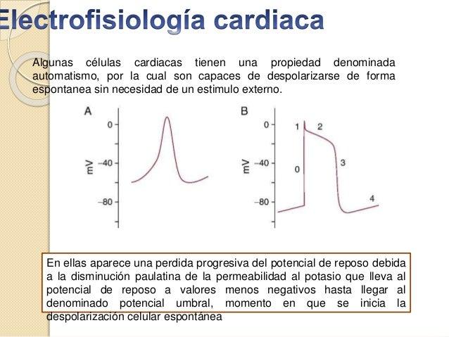 Algunas células cardiacas tienen una propiedad denominada automatismo, por la cual son capaces de despolarizarse de forma ...