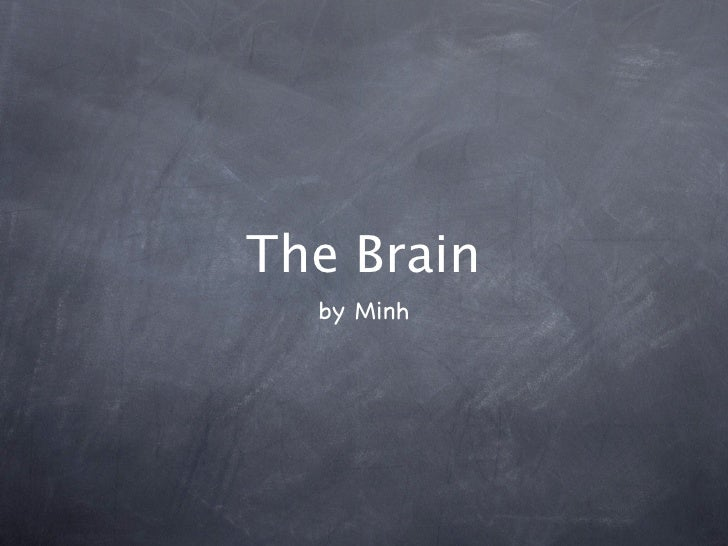 The Brain   by Minh